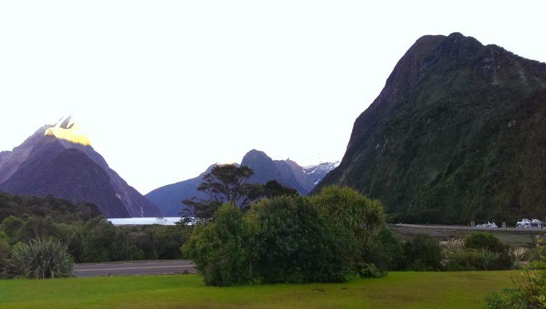 ニュージーランドで働く Vol.4 看護実習 その2