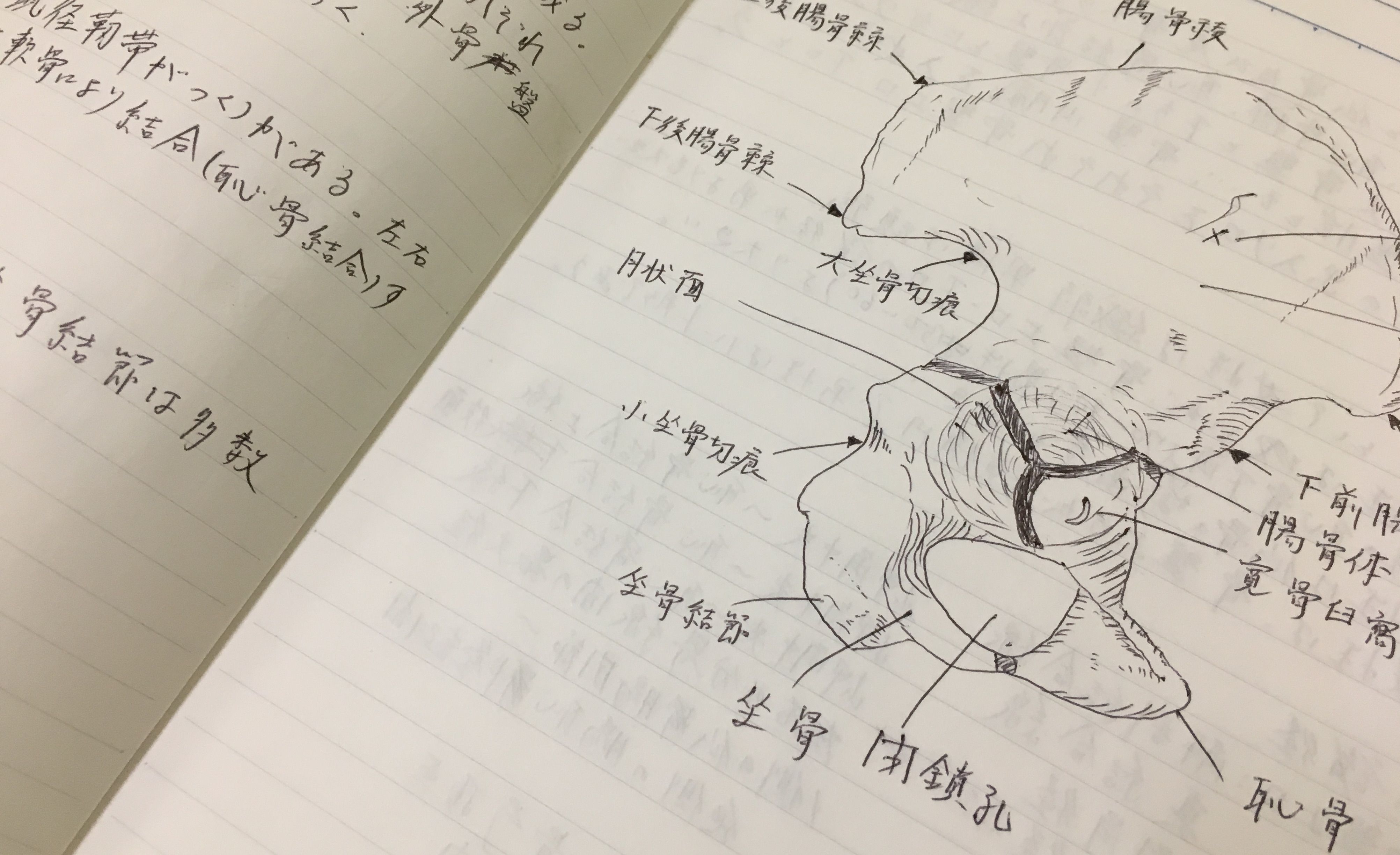 看護師国家試験合格の秘訣 Vol.1